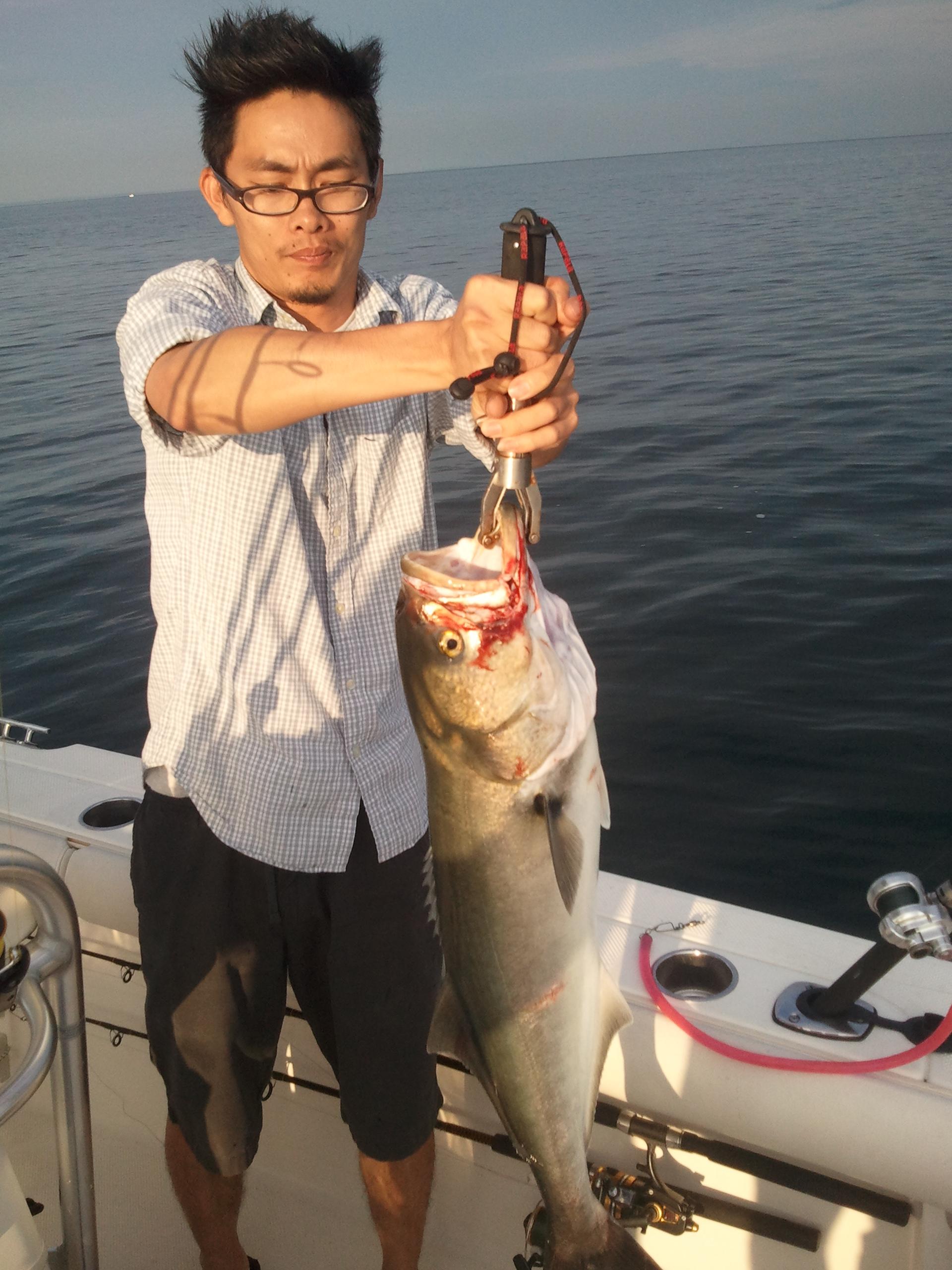 Samsung for Port jeff fishing