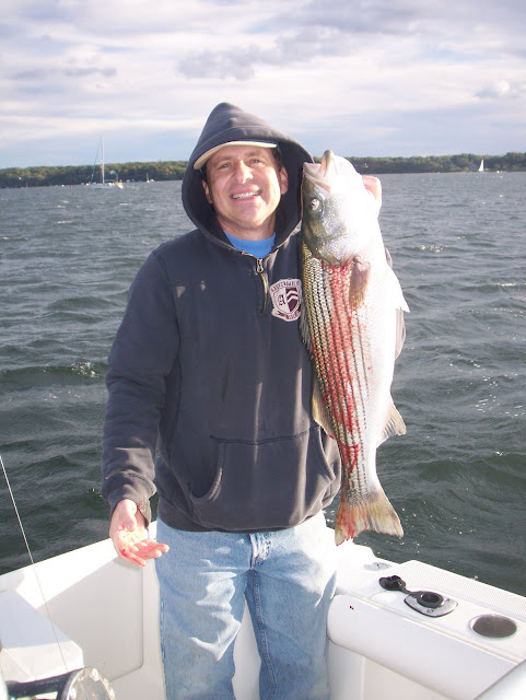 Striped bass 23 for Port jefferson fishing