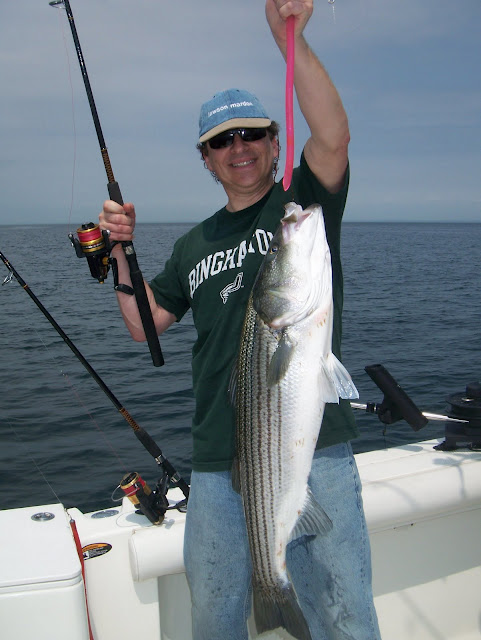 Striped bass 26 for Port jefferson fishing