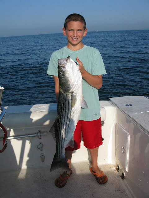 Striped bass 3 for Port jefferson fishing
