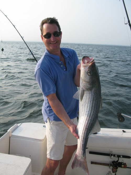 Striped bass for Port jefferson fishing